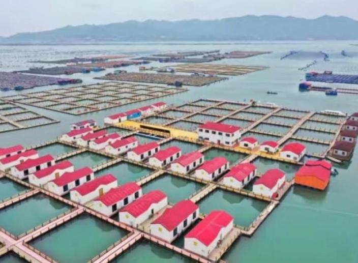 霞浦縣溪南鎮七星海域深水網箱養殖區內的漁排民宿。中國經濟未受疫情影響。 新華社圖片