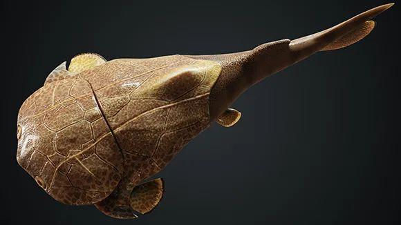 全球第二處!重慶發現4.23億年前袖珍邊城魚