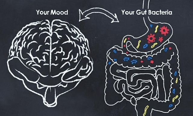 重整腸道微生態  穩定情緒健康重要一環
