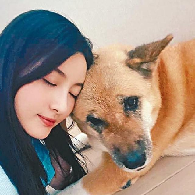 十歲愛犬患癌  林夏薇出席慶功宴崩潰爆喊
