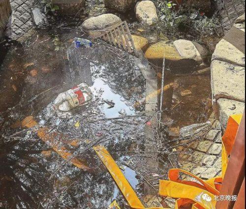 二環內均價12萬+的小區,景觀池成污水坑、房屋漏水